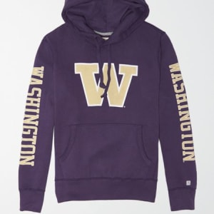 Tailgate Men's Washington Huskies Fleece Hoodie Purple M