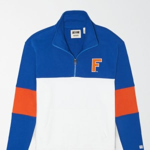 Tailgate Men's Florida Gators Quarter-Zip Sweatshirt Classic Blue L