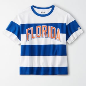 Tailgate Women's Florida Gators Striped T-Shirt White L
