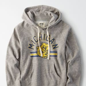 Tailgate Women's Michigan Wolverines Fleece Hoodie Gray Heather L
