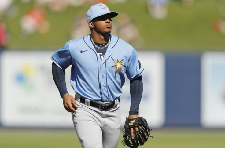 Tampa Bay Rays: Is Wander Franco ready for the big leagues?