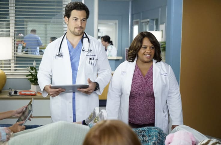 Grey S Anatomy Season 17 Expected To Premiere This Fall
