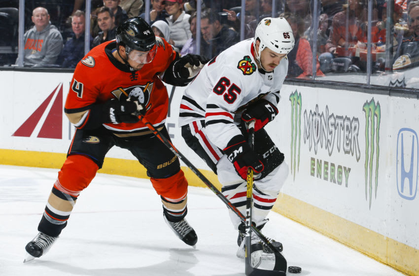ANAHEIM, CA - NOVEMBER 03: Michael Del Zotto #44 of the Anaheim Ducks and Erik Gustafsson #56 of the Chicago Blackhawks battle for the puck during the second period of the game at Honda Center on November 3, 2019 in Anaheim, California. (Photo by Debora Robinson/NHLI via Getty Images)
