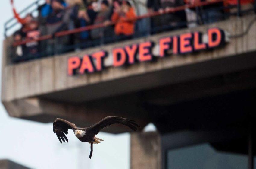 Auburn's War Eagle flies around Jordan-Hare Stadium in Auburn, Ala., on Saturday, Nov. 2, 2019. Auburn defeated Ole Miss 20-14. Jc Auburnolemiss 70