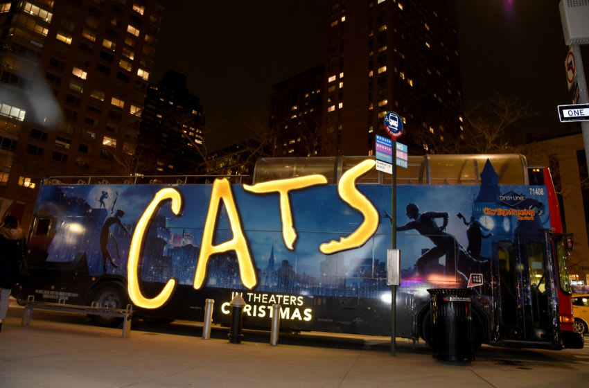 NEW YORK, NEW YORK - DECEMBER 16: A view of atmosphere during The World Premiere of Cats, presented by Universal Pictures on December 16, 2019 in New York City. (Photo by Jamie McCarthy/Getty Images for Universal Pictures)