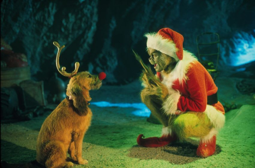 381271 02: The Grinch, Played By Jim Carrey, Conspires With His Dog Max To Deprive The Who's Of Their Favorite Holiday In The Live-Action Adaptation Of The Famous Christmas Tale, 'Dr. Seuss' How The Grinch Stole Christmas,' Directed By Ron Howard. (Photo By Getty Images)