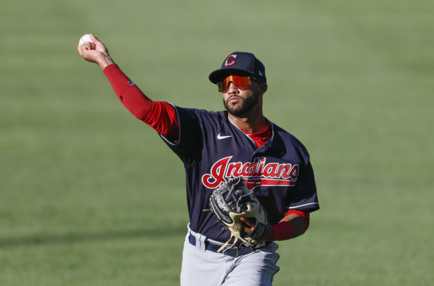 Aaron Bracho #83 of the Cleveland Indians (Photo by Ron Schwane/Getty Images)