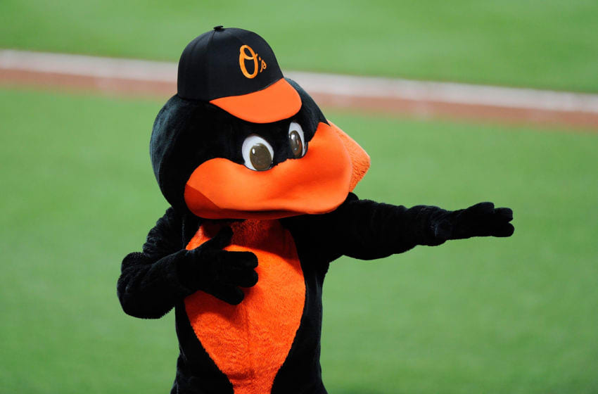 BALTIMORE, MD - JUNE 16: The Baltimore Orioles mascot performs during the seventh inning of the game against the St. Louis Cardinals at Oriole Park at Camden Yards on June 16, 2017 in Baltimore, Maryland. (Photo by Greg Fiume/Getty Images)