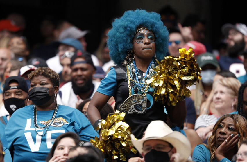 Fans of the Jacksonville Jaguars at NRG Stadium (Photo by Bob Levey/Getty Images)