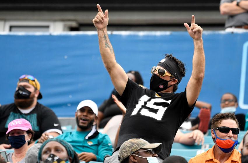 Jacskonville Jaguars fan reacting at TIAA Bank Field. (Douglas DeFelice-USA TODAY Sports)