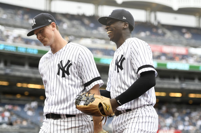 NEW YORK, NEW YORK - JULY 18: DJ LeMahieu #26 (L) and Didi Gregorius #18 of the New York Yankees walk off the field. (Photo by Sarah Stier/Getty Images)