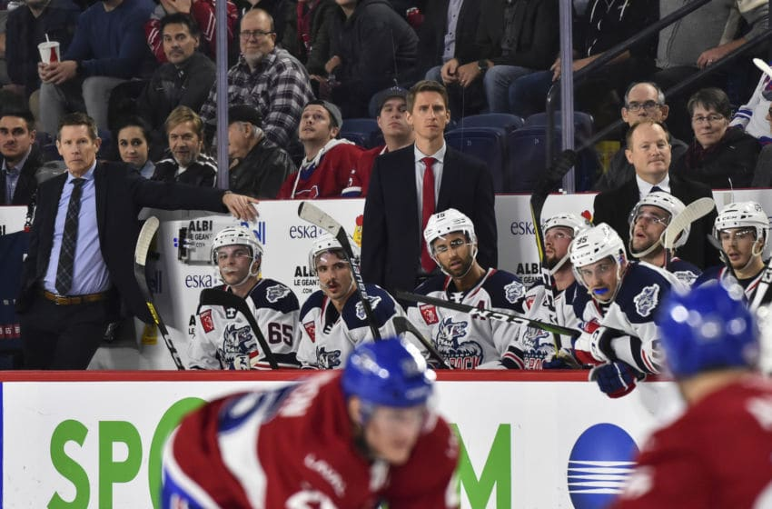 Head coach of the Hartford Wolf Pack Kris Knoblauch (Photo by Minas Panagiotakis/Getty Images)