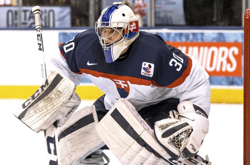 Goaltender Adam Huska #30 of Team Slovakia Photo by Adam Pulicicchio/Getty Images)