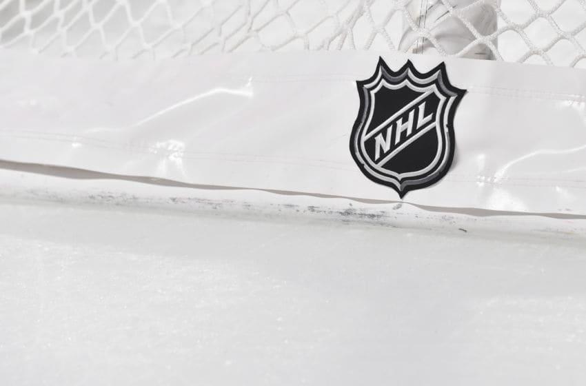 NHL Logo (Photo by Minas Panagiotakis/Getty Images)