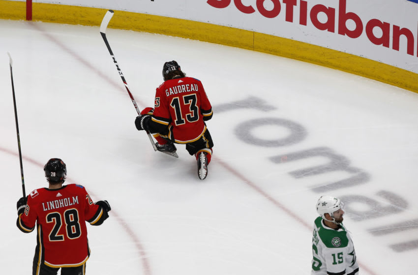 Johnny Gaudreau, Calgary Flames (Mandatory Credit: Perry Nelson-USA TODAY Sports)