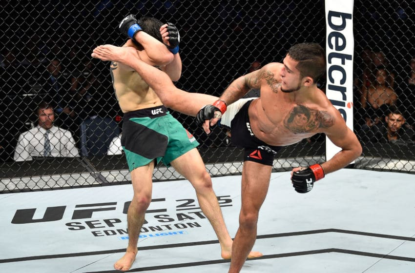 MEXICO CITY, MEXICO - AUGUST 05: (R-L) Sergio Pettis kicks Brandon Moreno of Mexico in their flyweight bout during the UFC Fight Night event at Arena Ciudad de Mexico on August 5, 2017 in Mexico City, Mexico. (Photo by Jeff Bottari/Zuffa LLC/Zuffa LLC via Getty Images)