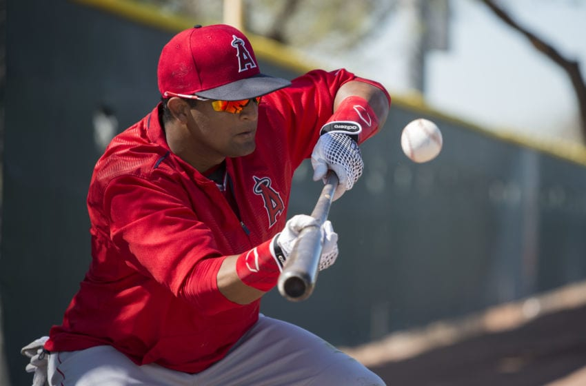 TEMPE, AZ - FEBRUARY 29: Roberto Baldoquin #74 of the Los Angeles Angels of Anaheim bunts during spring training on February 29, 2016 at Tempe Diablo Stadium in Tempe, Arizona. (Photo by Matt Brown/Angels Baseball LP/Getty Images)