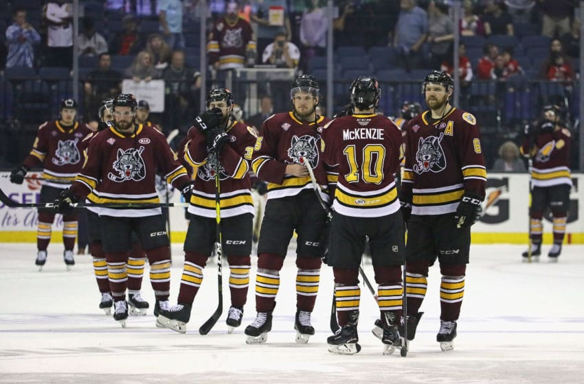 ROSEMONT, ILLINOIS - JUNE 08: Members of the Chicago Wolves watch as the Charlotte Checkers celebrate a win following game Five of the Calder Cup Finals at Allstate Arena on June 08, 2019 in Rosemont, Illinois. The Checkers defeated the Wolves 5-3 to win the Calder Cup. (Photo by Jonathan Daniel/Getty Images)