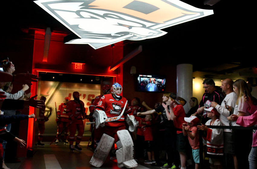 CHARLOTTE, NC - JUNE 02: Charlotte Checkers goaltender Dustin Tokarski (40) leads the team to the ice for player introductions prior to game two of the AHL Calder Cup Finals between the Charlotte Checkers and the Chicago Wolves on June 02, 2019 at Bojangles Coliseum in Charlotte,NC. (Photo by Dannie Walls/Icon Sportswire via Getty Images)