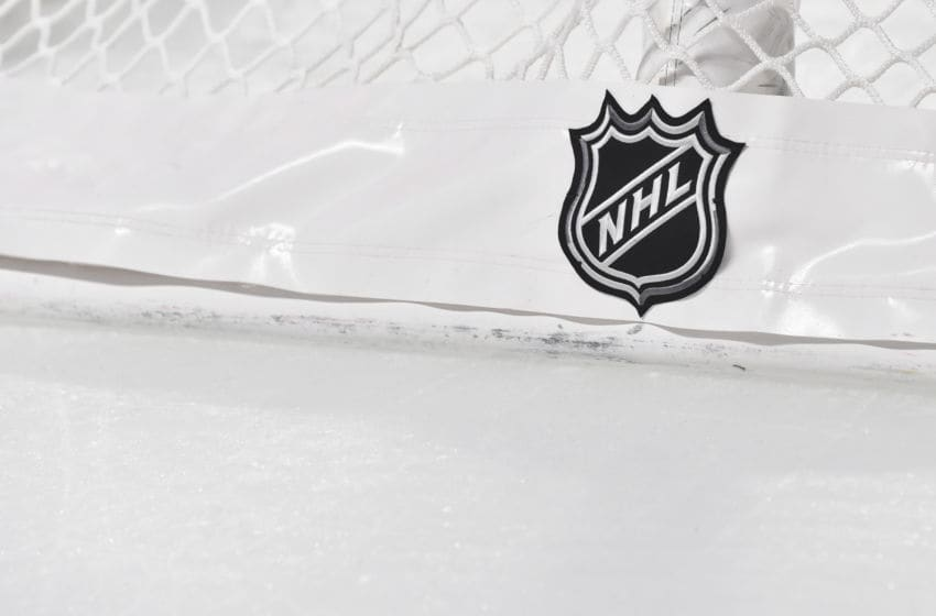 MONTREAL, QC - NOVEMBER 05: The NHL logo on the back of the goal netting between the Montreal Canadiens and the Boston Bruins at the Bell Centre on November 5, 2019 in Montreal, Canada. The Montreal Canadiens defeated the Boston Bruins 5-4. (Photo by Minas Panagiotakis/Getty Images)