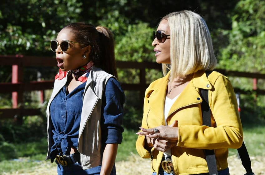THE REAL HOUSEWIVES OF POTOMAC -- Pictured: (l-r) Candiace Dillard Bassett, Karen Huger -- (Photo by: Larry French/Bravo)