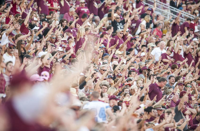 TALLAHASSEE, FL - OCTOBER 01: Florida State Seminoles fans during the game against the North Carolina Tar Heels at Doak Campbell Stadium on October 1, 2016 in Tallahassee, Florida. (Photo by Jeff Gammons/Getty Images)