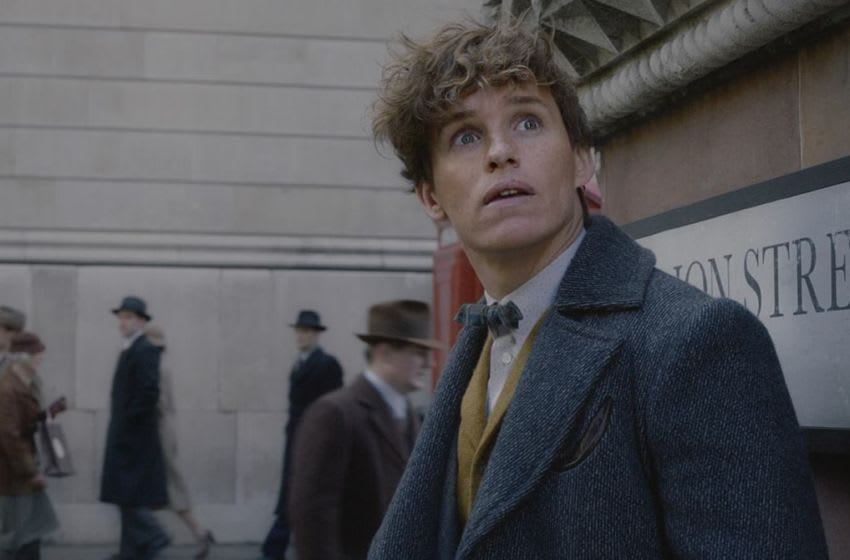 Newt Scamander (Eddie Redmayne) in Fantastic Beasts and Where to Find Them: The Crimes of Grindelwald