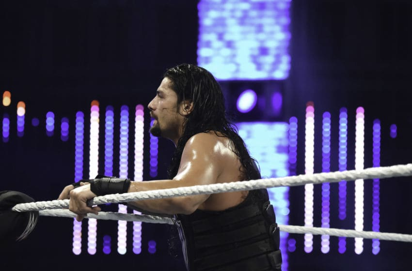 WWE, Roman Reigns (Photo by Ron ElkmanSports Imagery/Getty Images)