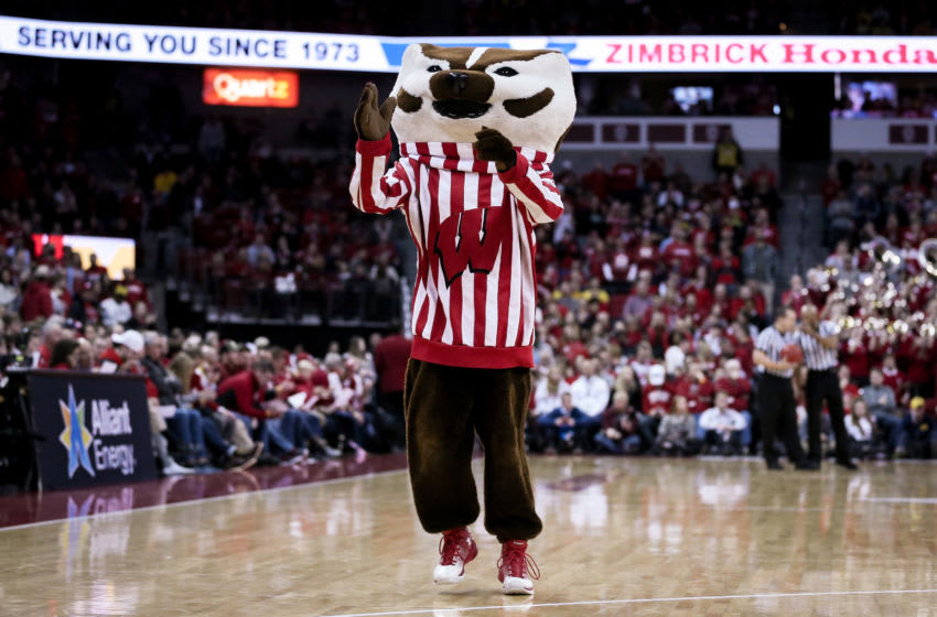 MADISON, WISCONSIN - JANUARY 19: Bucky Badger, the Wisconsin Badgers mascot, walks across the court during the game between the Michigan Wolverines and Wisconsin Badgers at the Kohl Center on January 19, 2019 in Madison, Wisconsin. (Photo by Dylan Buell/Getty Images)