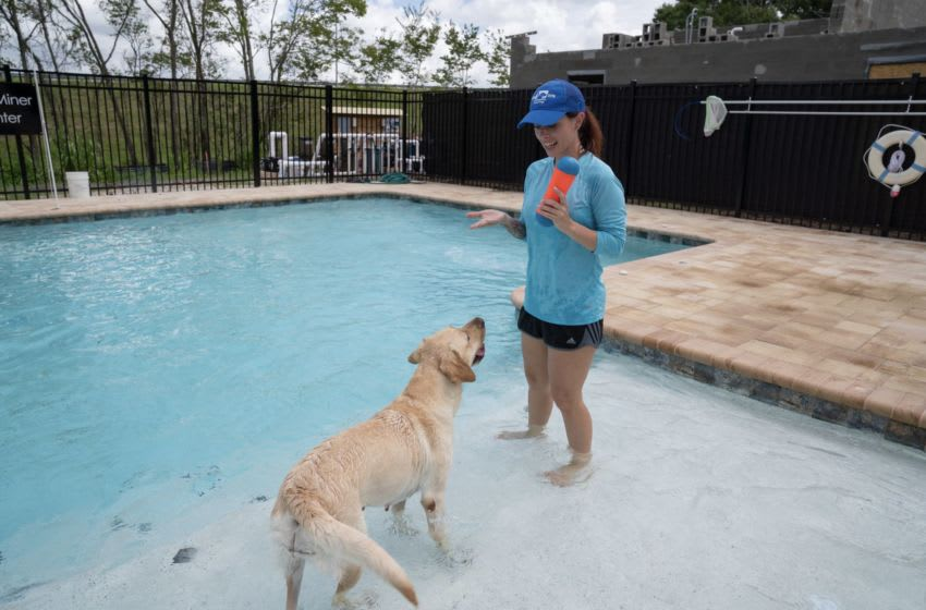 The Southeastern Guide Dogs Canine Fitness Program is designed to enhance the health and skills of guide dogs. Photos provided by Southeastern Guide Dogs