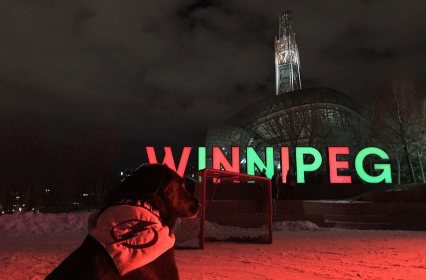 Holland the Pup visits Winnipeg. Photo by Adam Vosding