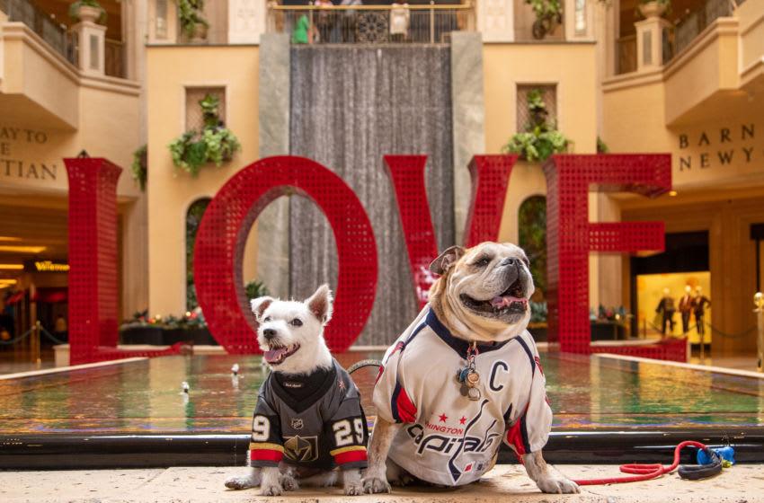 Photo: Ovie the Bulldog and Bark-Andre Furry.. Image Courtesy Rick Williams