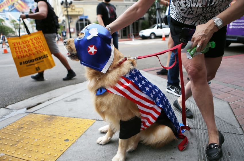 SAN DIEGO, CA - JULY 20: A dog is dressed as Captain America outside outside Comic-Con on July 20, 2018 at the San Diego Convention Center in San Diego, California. More than 100,000 are expected at the annual comic and entertainment convention. (Photo by Mario Tama/Getty Images)