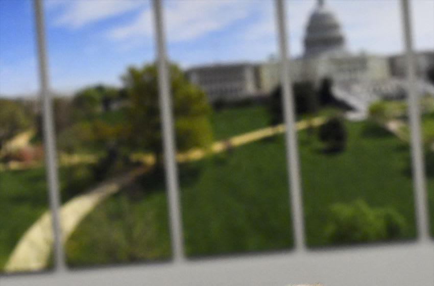 WASHINGTON, DC - NOVEMBER 13: 'Mac,' a Boerboel therapy dog, waits to greet Congressional staff during a