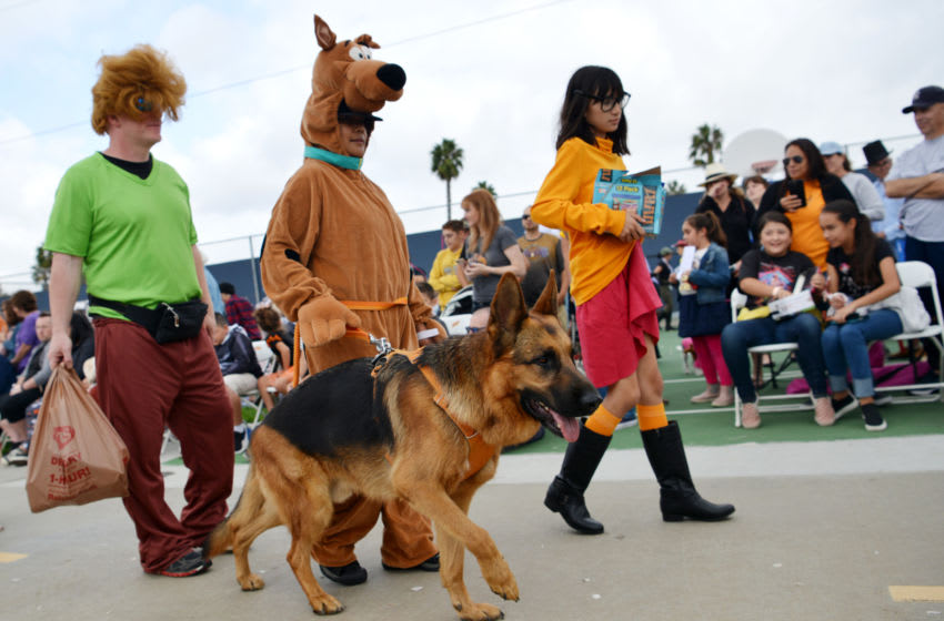 LONG BEACH, CALIFORNIA - OCTOBER 27: Participants are seen in Scooby-Doo costumes at the Haute Dog Howl'oween Parade at Marina Vista Park on October 27, 2019 in Long Beach, California. (Photo by Chelsea Guglielmino/Getty Images)
