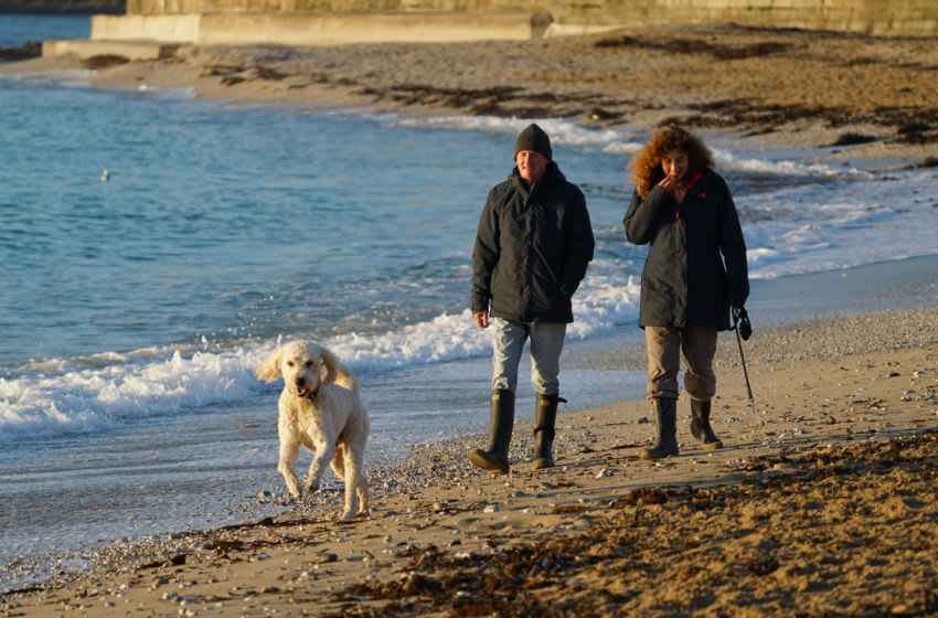 FALMOUTH, ENGLAND - NOVEMBER 05: A couple take their exercise by walking their dog at Gyllyngvase Beach on November 5, 2020 in Falmouth, United Kingdom. England enters second national coronavirus lockdown today. People are still permitted to exercise with one other person, takeaway food is permitted but bars and restaurants are shut for sit-in service. School will remain open but people are being advised to work from home where possible and only undertake necessary travel. All non-essential shops are closed with supermarkets and builders' merchants remaining open. (Photo by Hugh R Hastings/Getty Images)