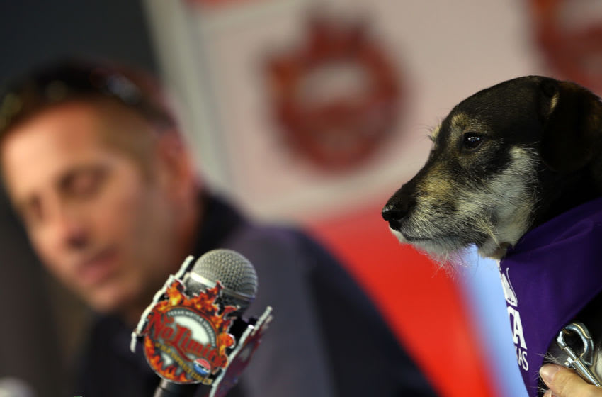FORT WORTH, TX - MARCH 20: (L-R) Greg Biffle, driver of the #16 3M Ford Fusion, talks to the media with Lily, a dog from the SPCA of Texas, during an event at Texas Motor Speedway on March 20, 2013 in Fort Worth, Texas. Biffle and his wife, Nicole started the Greg Biffle Foundation which supports over 500 humane societies and animal shelters across the country. (Photo by Tom Pennington/Getty Images for Texas Motor Speedway)