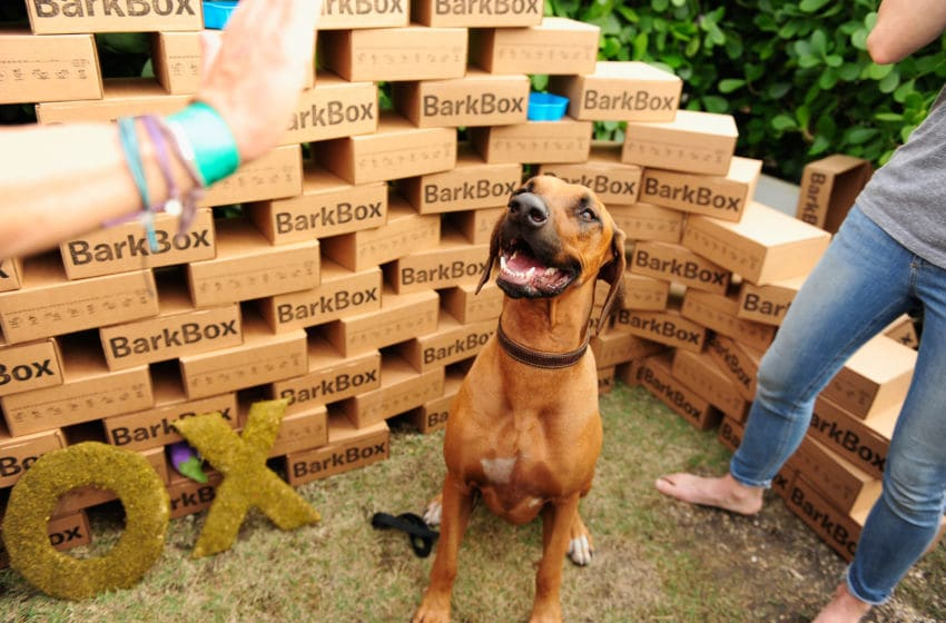 MIAMI BEACH, FL - FEBRUARY 21: BarkBox on display at Yappie Hour presented by BarkBox hosted by Rachael Ray during the 2015 Food Network & Cooking Channel South Beach Wine & Food Festival presented by FOOD & WINE at The Standard Spa on February 21, 2015 in Miami Beach, Florida. (Photo by Sergi Alexander/Getty Images for SOBEWFF)