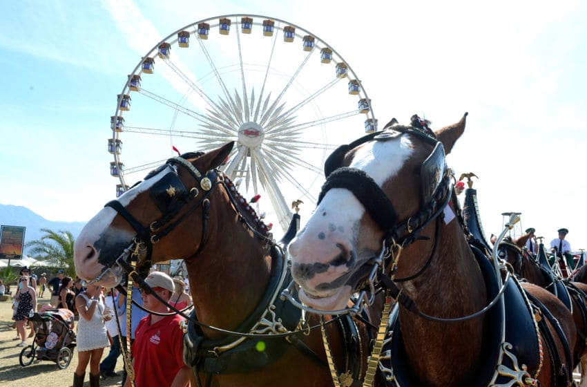 INDIO, CA - APRIL 26: Budweiser Clydesdales attend day three of 2015 Stagecoach, California's Country Music Festival, at The Empire Polo Club on April 26, 2015 in Indio, California. (Photo by Matt Cowan/Getty Images for Stagecoach)