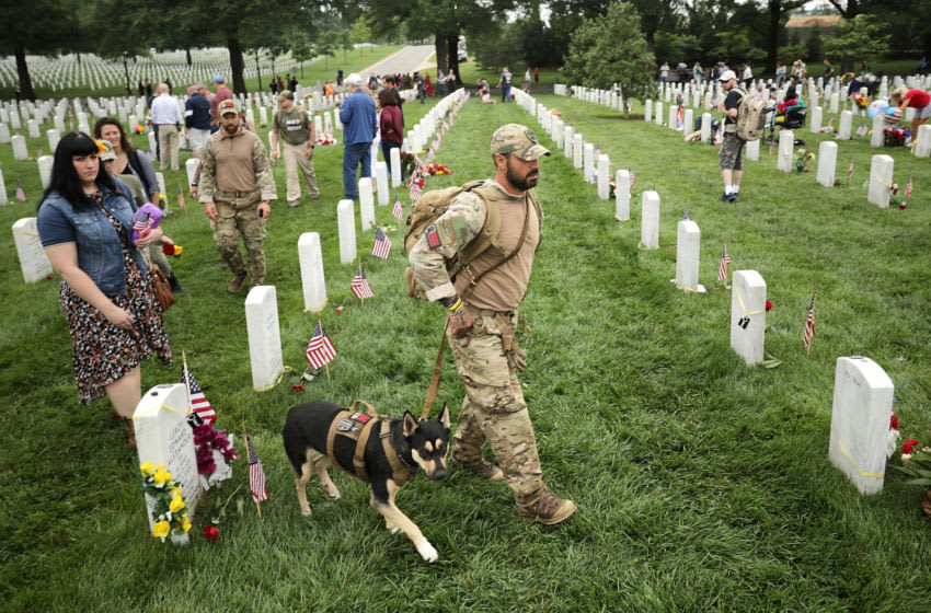 ARLINGTON, VA - MAY 29: U.S. Army veteran Jonathan Lopez, of Miami, Florida, and his dog, 2-year-old huskie Zoe, walk through Section 60 at Arlington National Cemetery on Memorial Day May 29, 2017 in Arlington, Virginia. Lopez works with Operation Enduring Warrior and participated in the Ruck to Remember, a 60 mile hike from Harpers Ferry to the cemetery over the Memorial Day weekend. Lopez served tours of duty in Kosovo, Bosnia and Macedonia with the Army Quick Reaction Force before being hit by a drunk driver and losing his arm in 2000. (Photo by Chip Somodevilla/Getty Images)