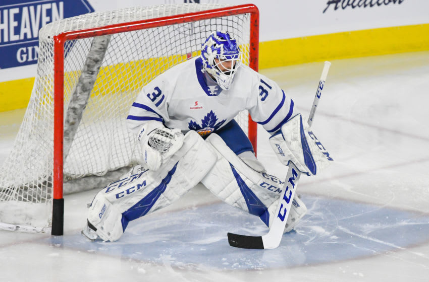 LAVAL, QC, CANADA - MARCH 6: Michael Hutchinson #31 of the Toronto Marlies in ready stance during warm-up against the Laval Rocket at Place Bell on March 6, 2019 in Laval, Quebec. (Photo by Stephane Dube /Getty Images)