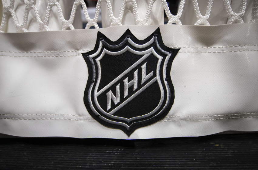 WASHINGTON, DC - OCTOBER 16: A detailed view of the NHL logo on the back of the goal netting before the game between the Washington Capitals and the Toronto Maple Leafs at Capital One Arena on October 16, 2019 in Washington, DC. (Photo by Scott Taetsch/Getty Images)