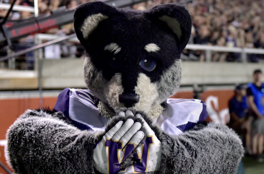 SALT LAKE CITY, UT - SEPTEMBER 15: Harry the Washington Huskies mascot on the sidelines in the second half of a game against the Utah Utes at Rice-Eccles Stadium on September 15, 2018 in Salt Lake City, Utah. (Photo by Gene Sweeney Jr/Getty Images)
