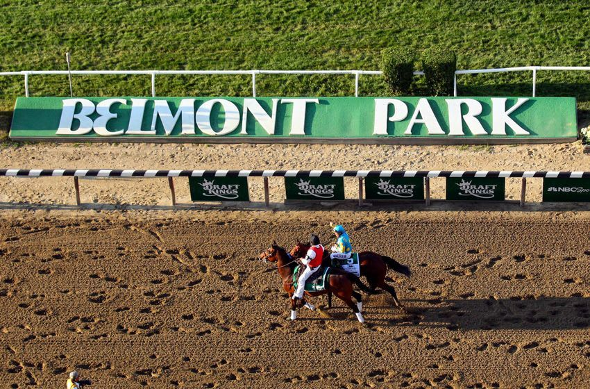 Jun 6, 2015; Elmont, NY, USA; American Pharoah (5) walks by the Belmont Park sign after winning the 2015 Belmont Stakes at Belmont Park. American Pharoah won all three legs of the Triple Crown. Mandatory Credit: Brad Penner-USA TODAY Sports