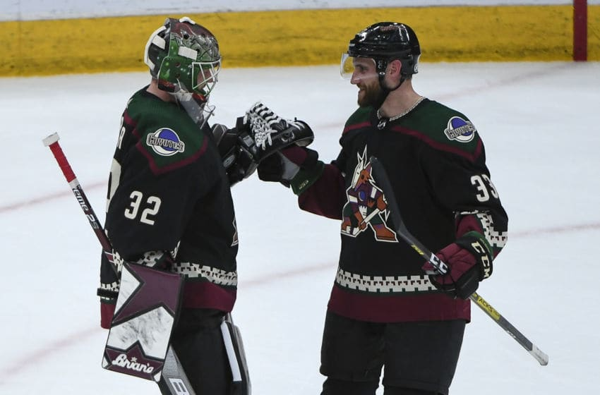 Antti Raanta, Alex Goligoski, Arizona Coyotes. (Photo by Jennifer Stewart/Getty Images )