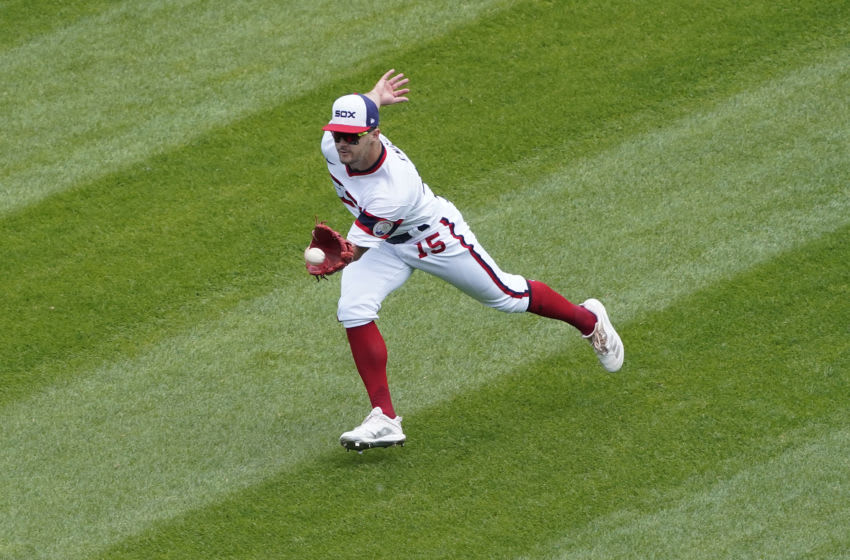 White Sox center fielder Adam Engel. (David Banks-USA TODAY Sports)