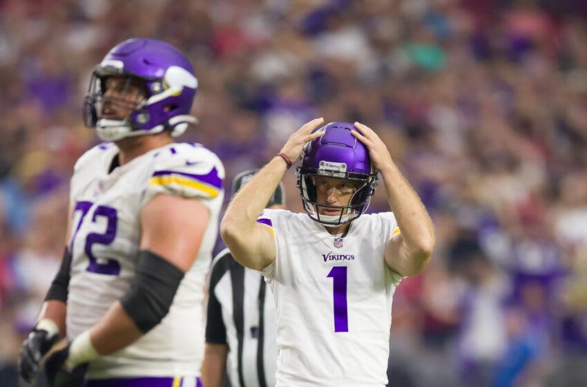Minnesota Vikings, fans Mandatory Credit: Billy Hardiman-USA TODAY Sports
