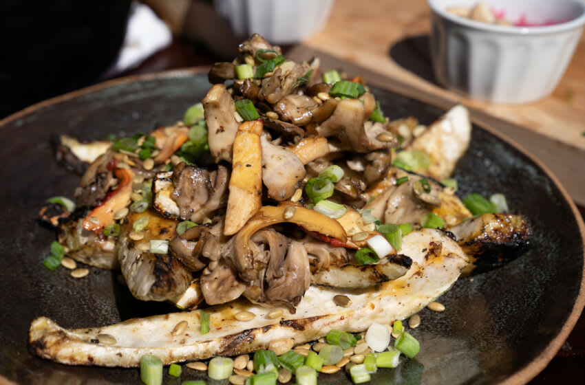 NC - Gordon Ramsey mushroom dish during the last cooking season in the North Carolina Mountains.  (Credit: National Geographic / Justin Mandela)