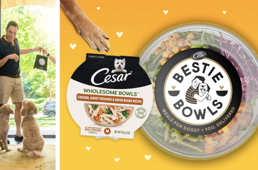Jeff Mauro for CESAR Bestie Bowls, photo provided by CESAR