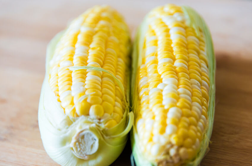 TORONTO, ONTARIO, CANADA - 2015/03/30: Raw sweet corn: realistic approach to food ingredients. Two raw corn cobs over a wooden surface with shallow depth of field and natural lightning. (Photo by Roberto Machado Noa/LightRocket via Getty Images)